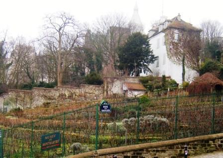 """""""Vineyard of Montmartre Paris"""""""